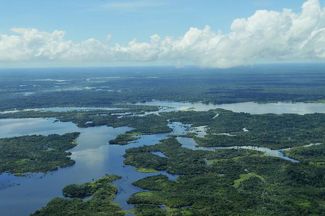Goede voornemens: overstappen wordt niet comfortabeler (Amazon20 door CIAT International Center for Tropical Agriculture)