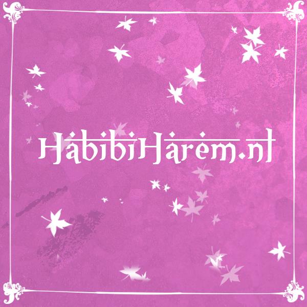Habibi Harem: modern-islamitisch uithuwelijken